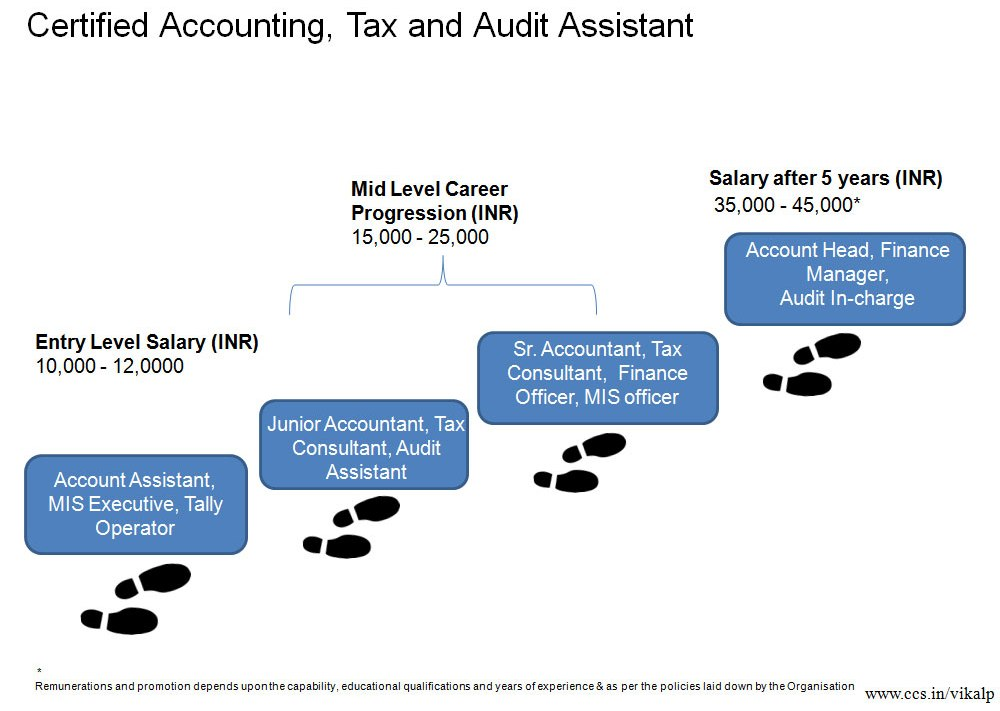 possible career path for accountants